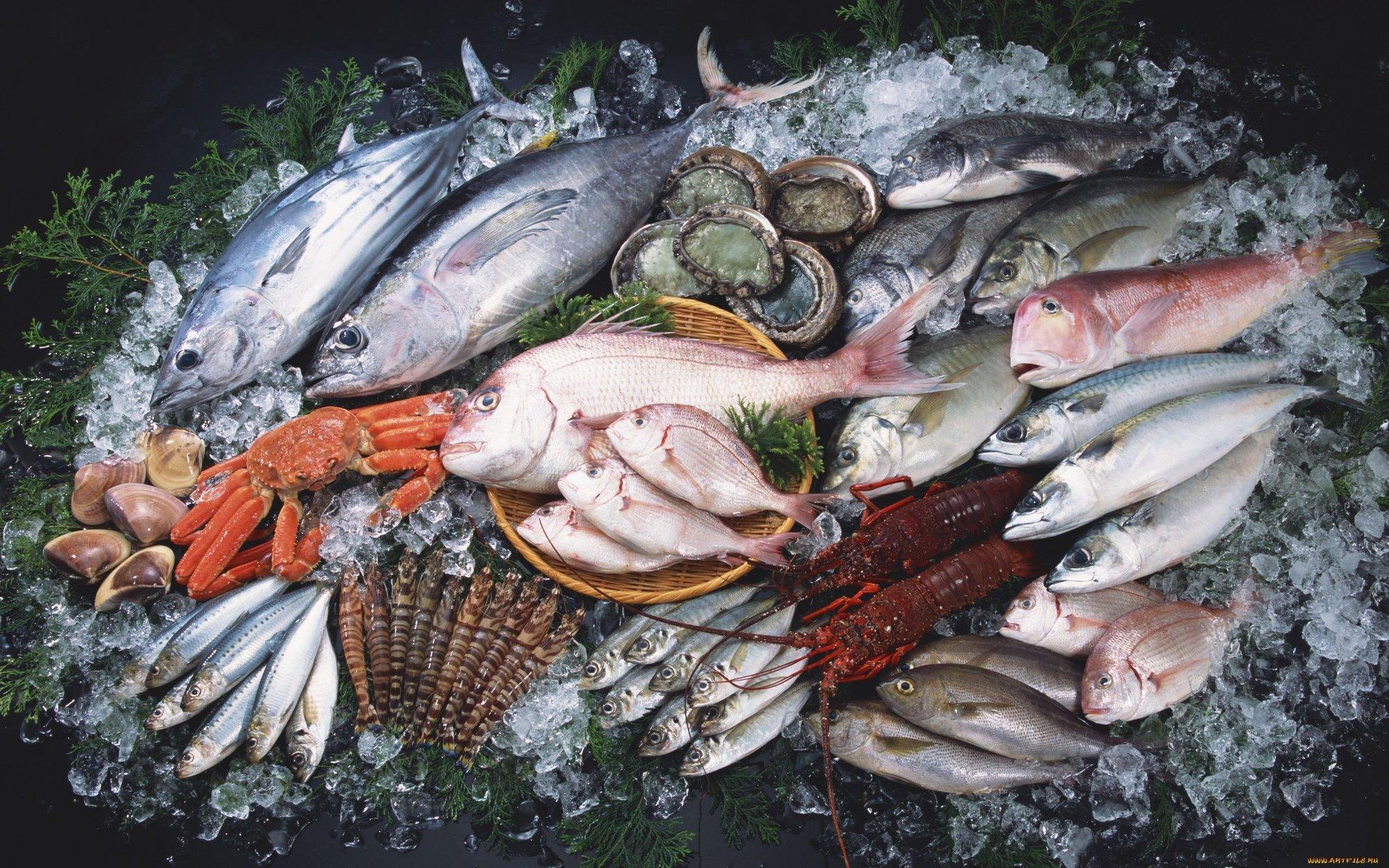 Картинки свежемороженая рыба